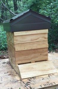 Our beautiful handcrafted beehive.